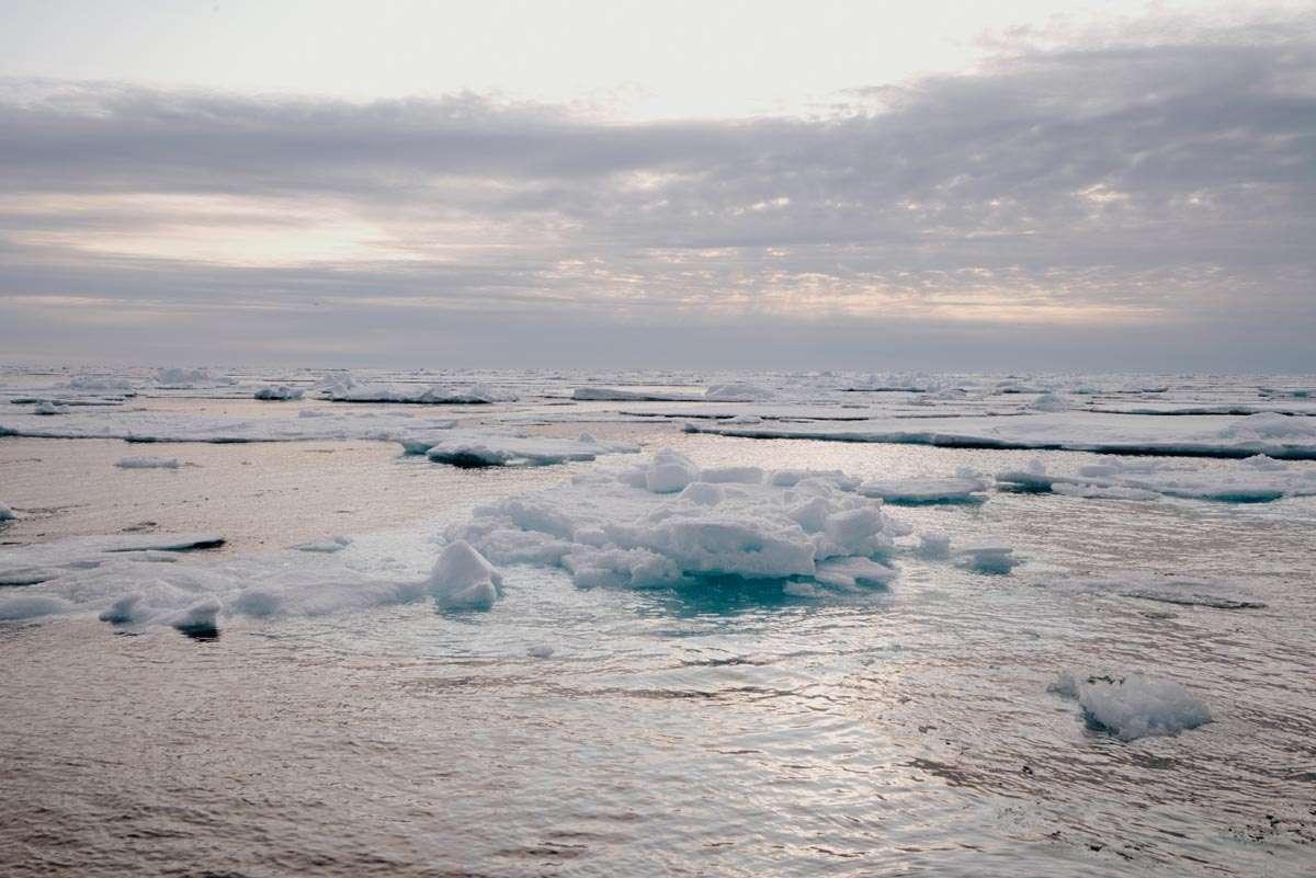 sea ice in svalbard