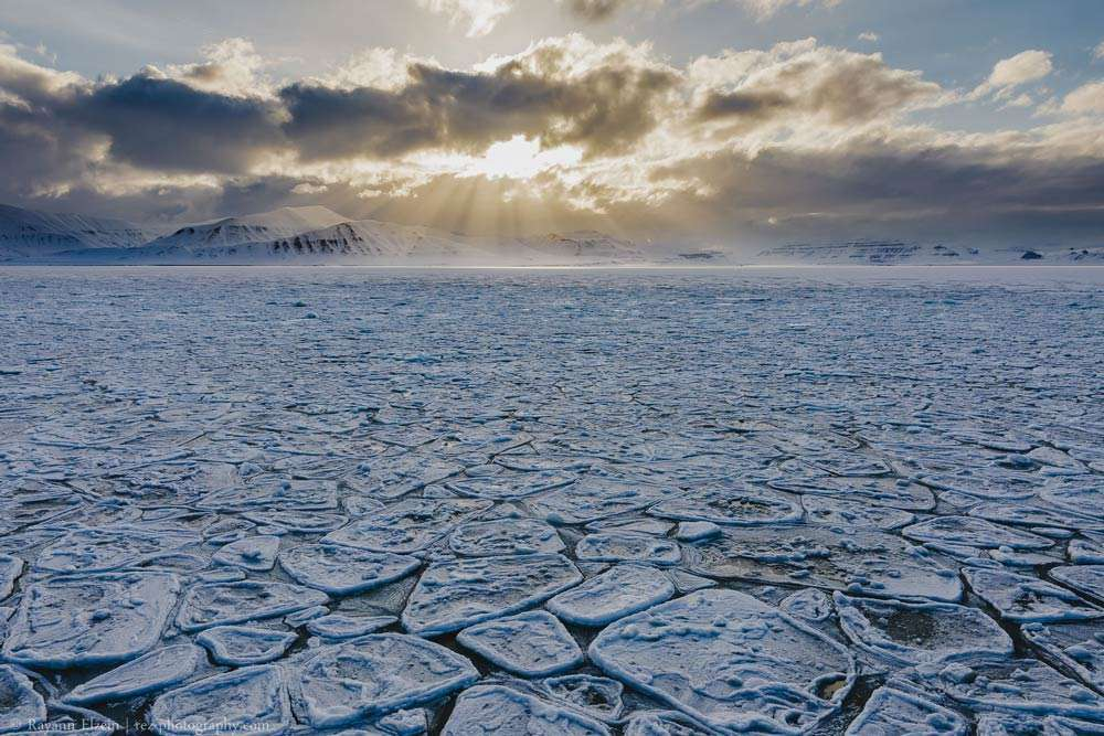 svalbard photography tour