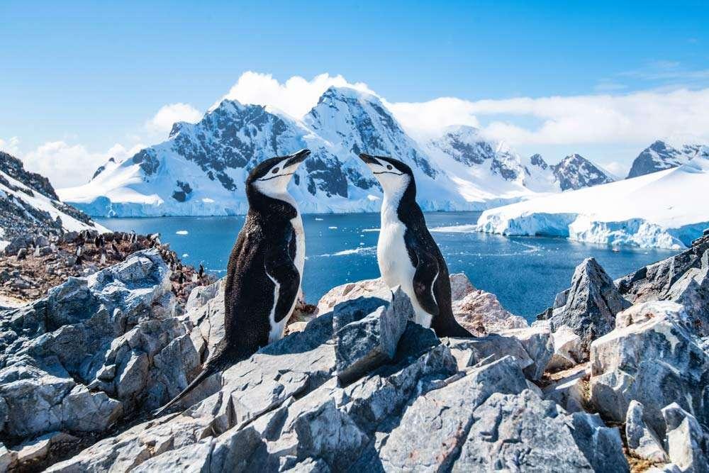 Antarctica sailing