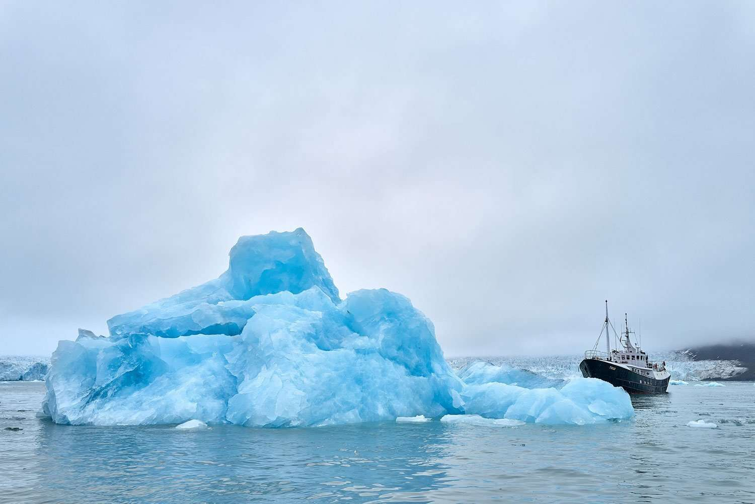 expedition vessel for charter in svalbard and greenland