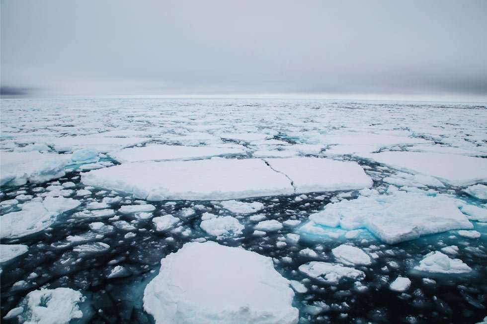 svalbard sea ice cruise