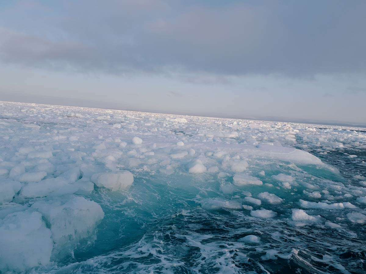 sea ice on a cruise in svalbard