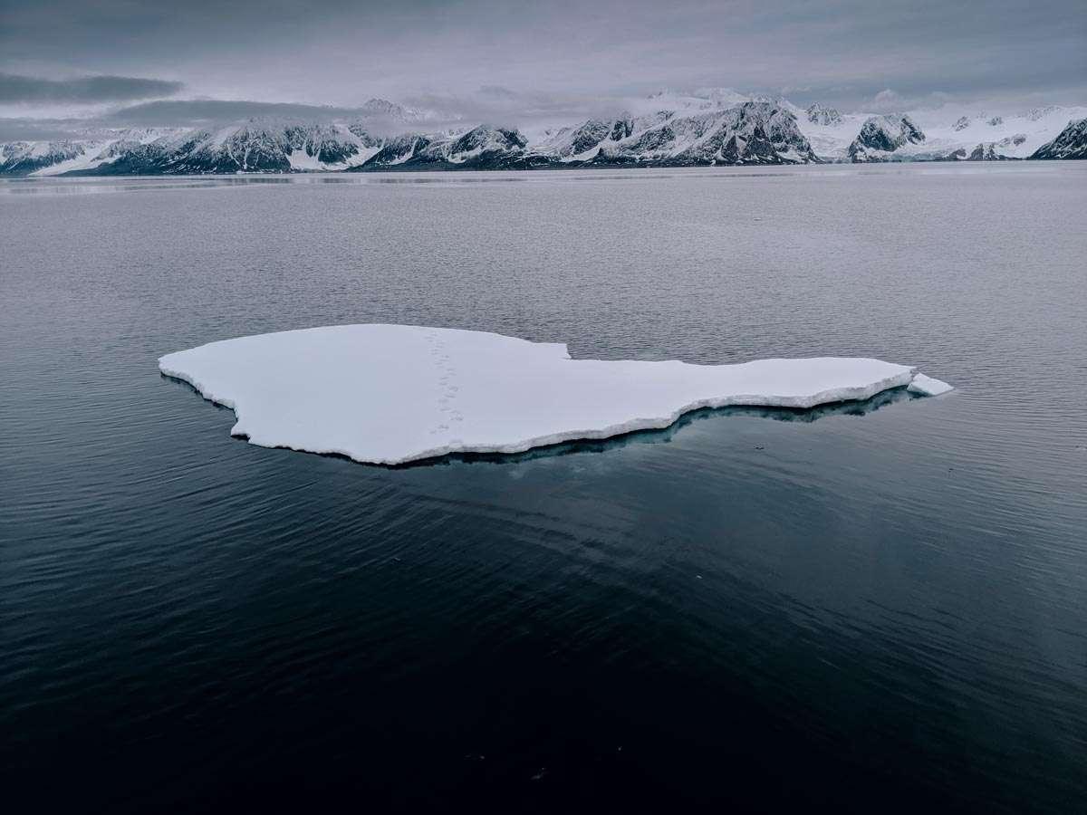 Svalbard visit
